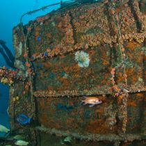 St. Maarten: duurzaam toerisme met Man of War Shoal Marine Park