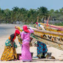 Gambia voor beginners
