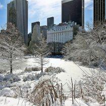New York verwacht recordsneeuw