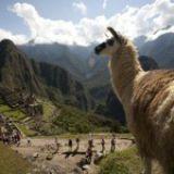 Groot onderhoud Machu Picchu en Huayna Picchu