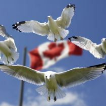 ETA Canada vanaf 29 september verplicht