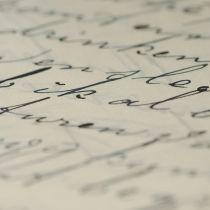 Toeristen schrijven steeds meer